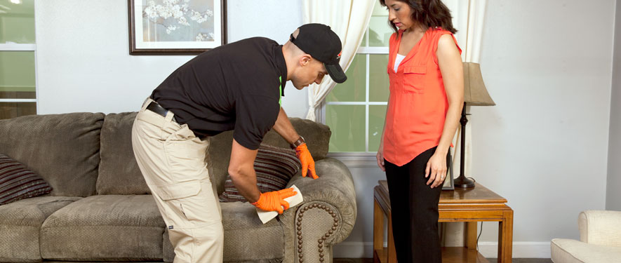 Severn, MD carpet upholstery cleaning